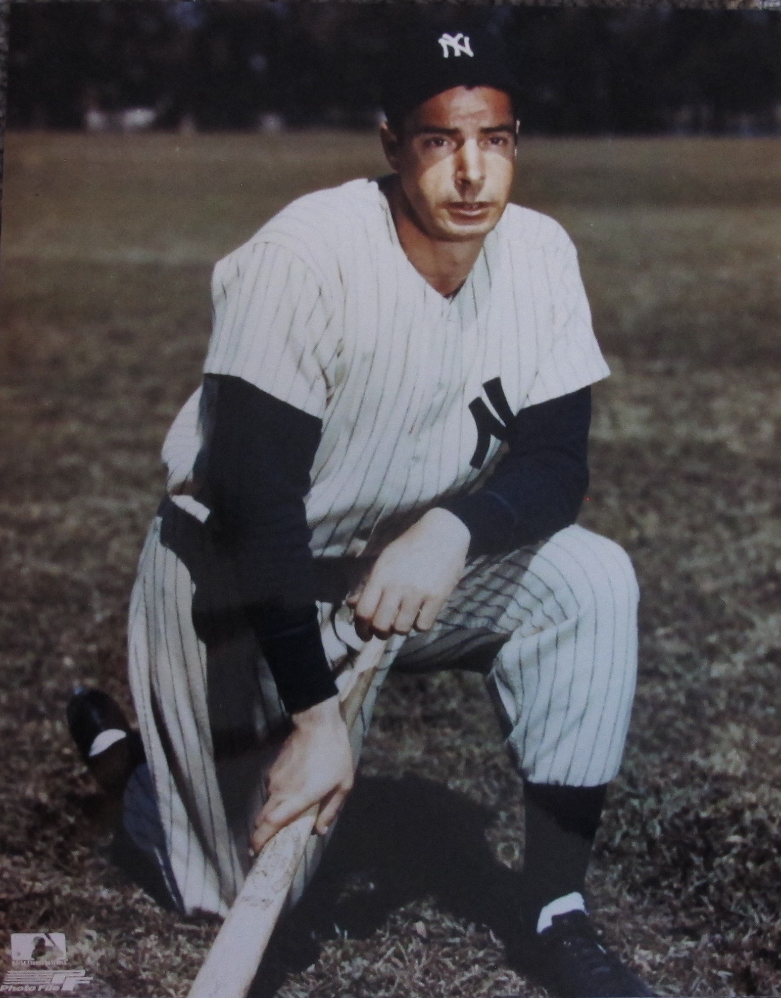 Joe Dimaggio Photo