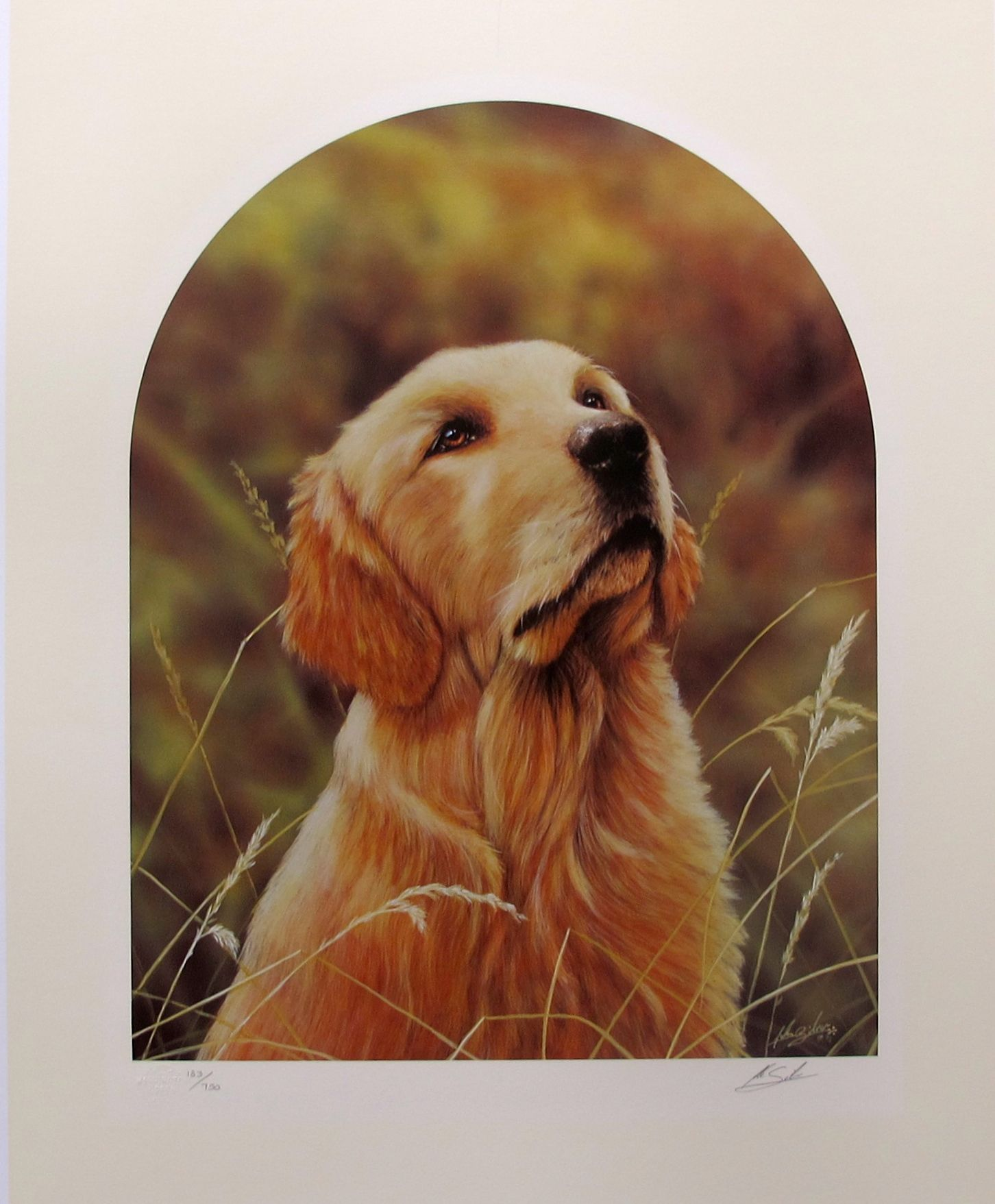 John Silver GOLDEN RETRIEVER Hand Signed Limited Edition Lithograph