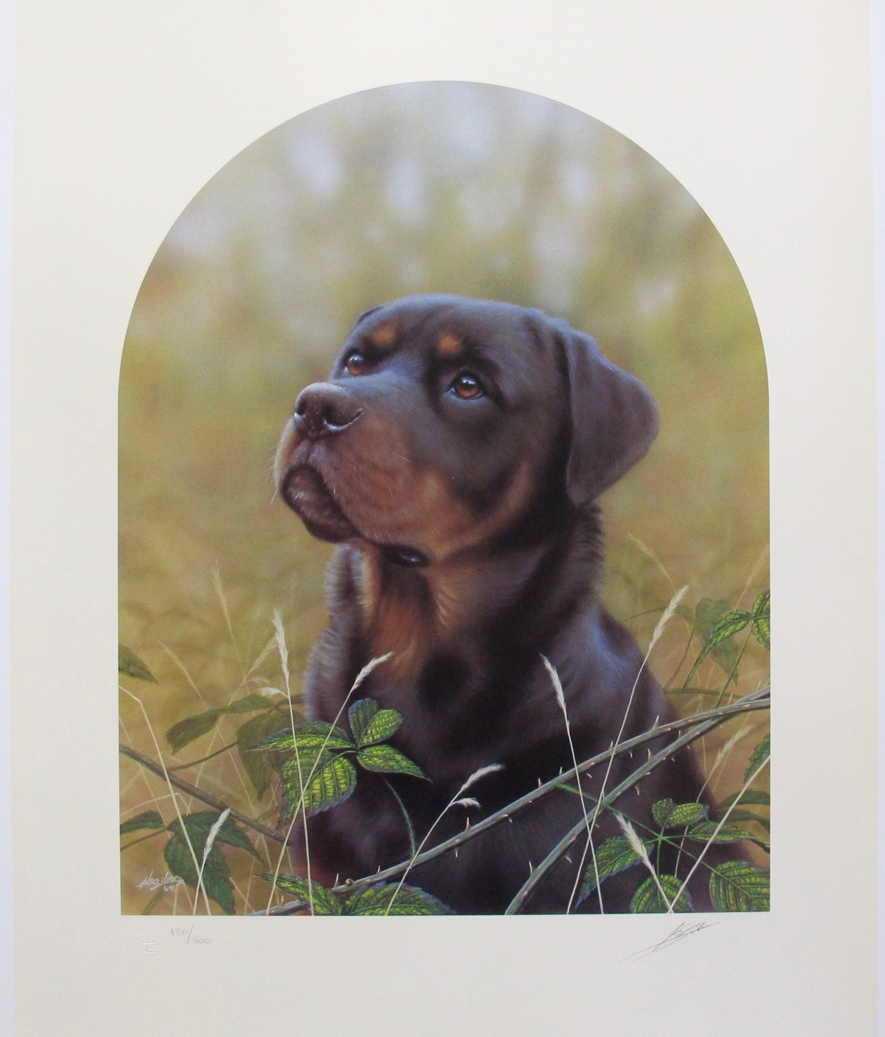 JOHN SILVER ROTTWEILER DOG Hand Signed Limited Edition Art Lithograph