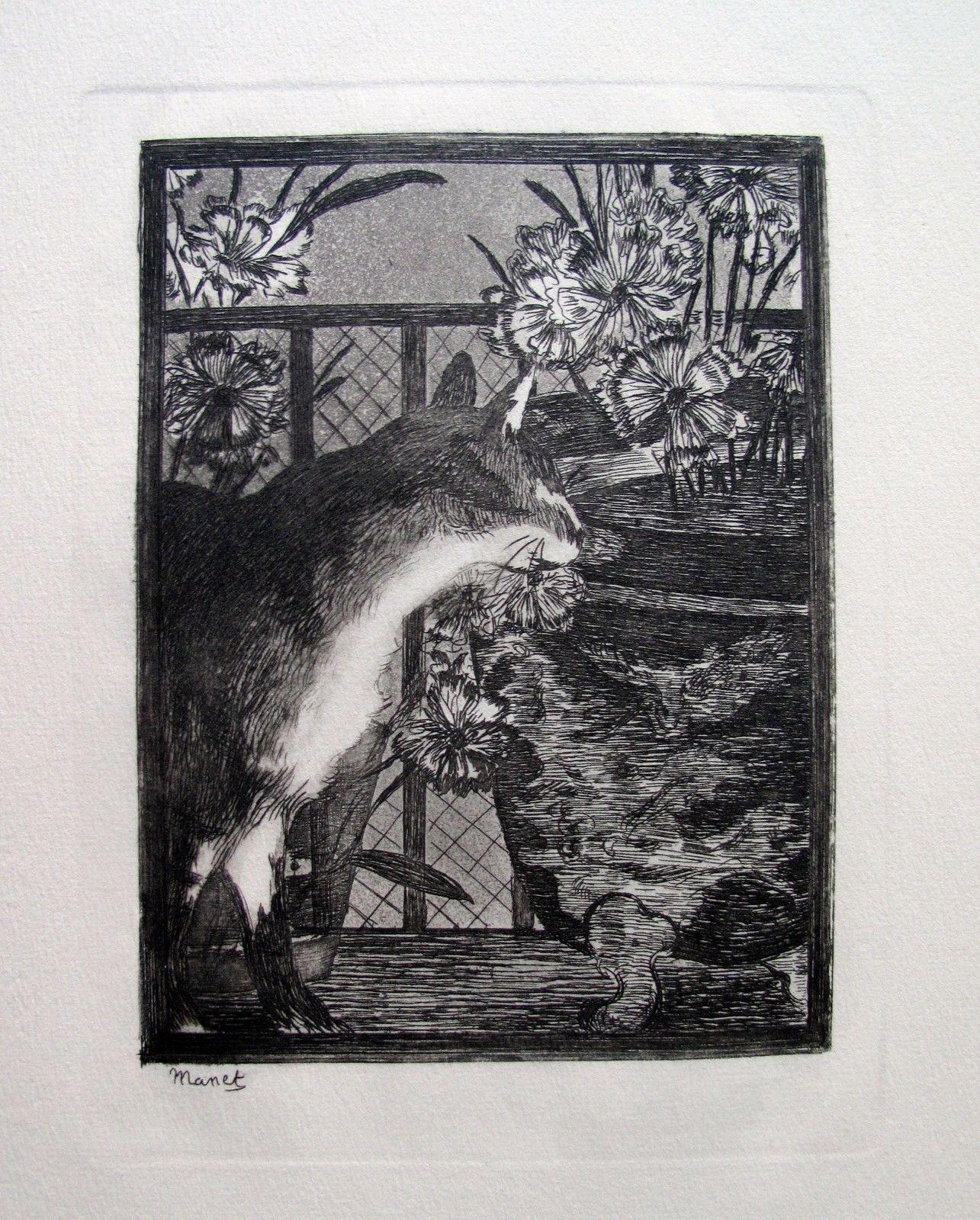 Edouard Manet LE CHAT AUX FLEURS Restrike Etching