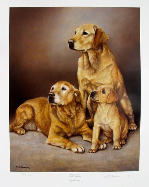Nigel Hemming GENERATIONS YELLOW LABRADORS Hand Signed Limited Ed. Lithograph